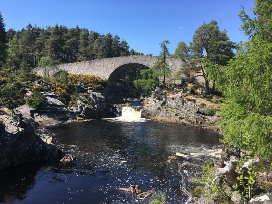 3 Summer in the Cairngorms #rockclimbing #mountainbiking #mountaineering #wildswimming