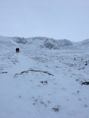 1 Great conditions for this week's winter skills & winter mountaineering courses